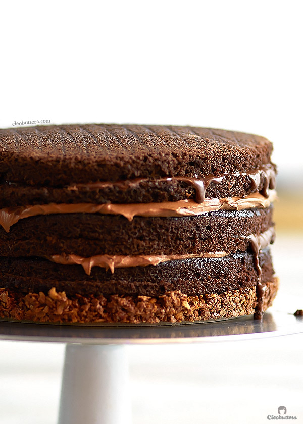 Hands Down The Ultimate Nutella Cake With More Than 3 1 2 Cups Of