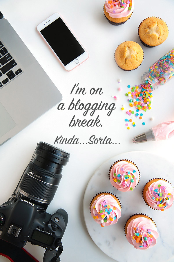 I'm on a blogging break. Kinda...Sorta...