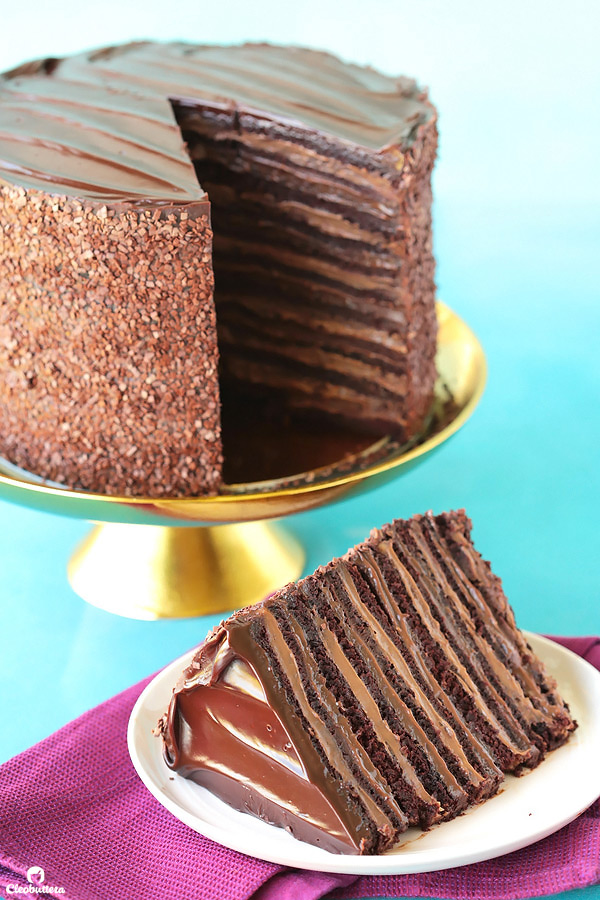 Epic 12 Layer Chocolate Cake Cleobuttera