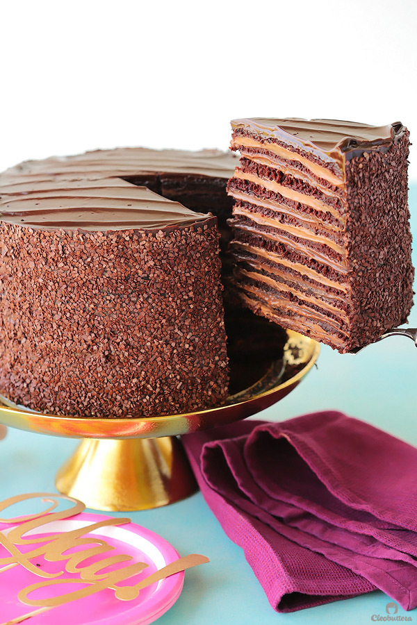 Epic 12 Layer Chocolate Cake Cleobuttera